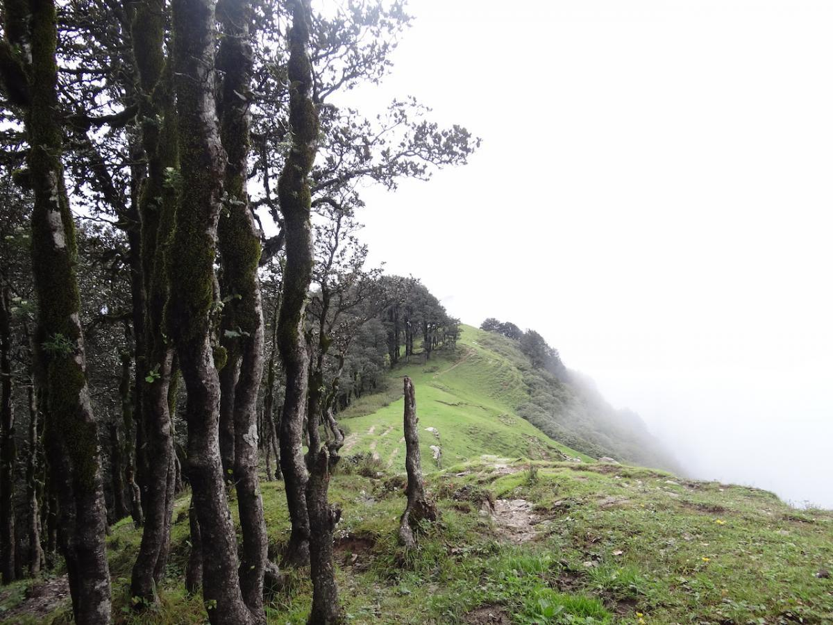 Droga od przełęczy w kierunku świątyni 'Starej Wężycy'