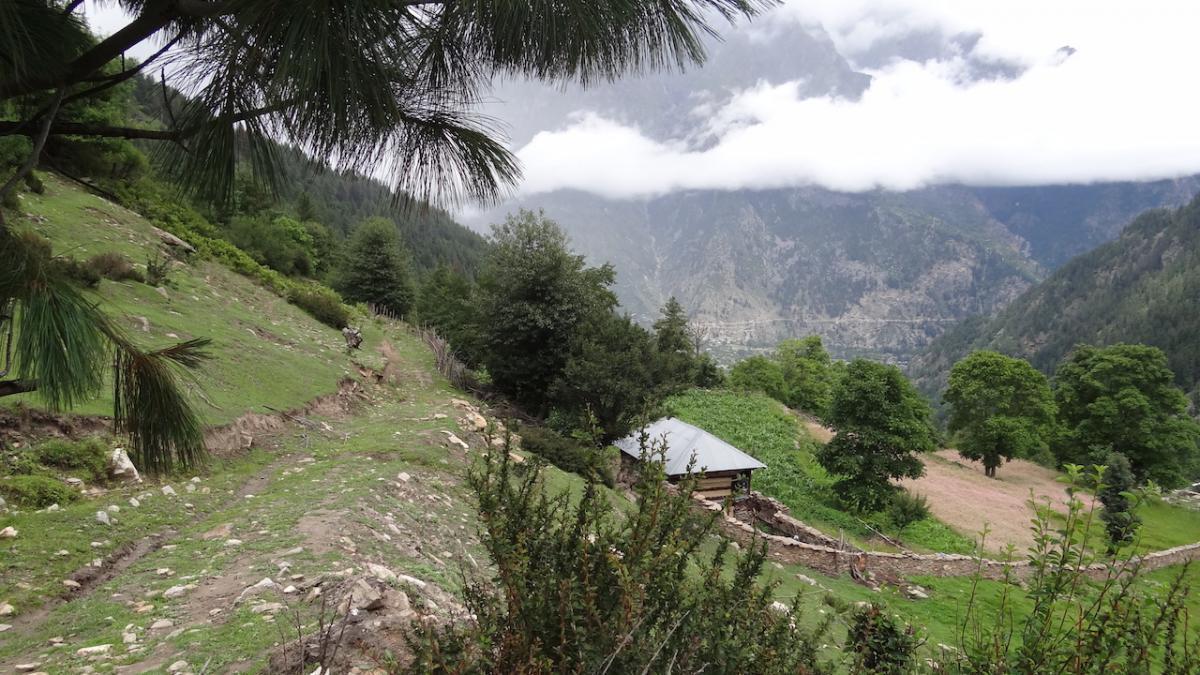 W drodze na hale czyli na khandę Sangli