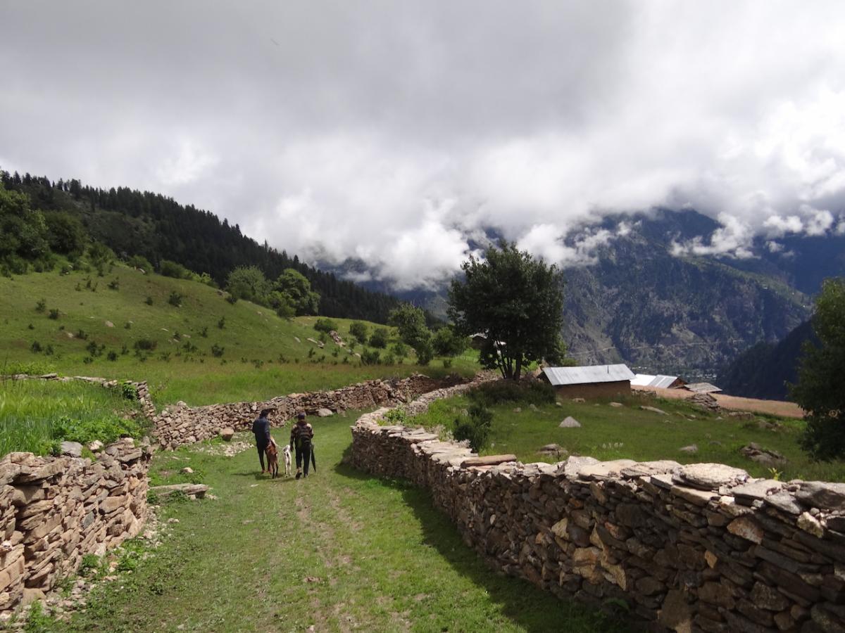 W drodze powrotnej. Za chmurami masyw kinnaurskiej Kailasy widziany od południa
